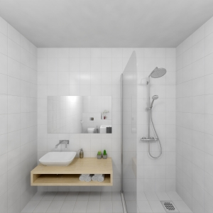 Bathroom Project 20x20 wit (Jan Groen Tegels)