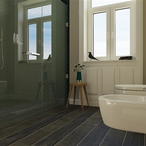 LivingRoom Typical Bathroom_72 (Ronaldo)