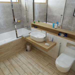LivingRoom Typical Bathroom61 (Ronaldo)