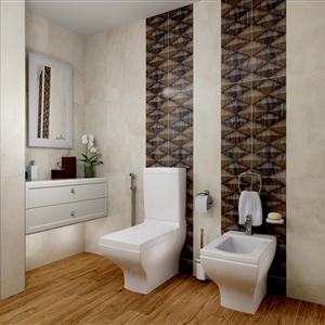 LivingRoom Master Bathroom_05 (Sara General Est. Dubai UAE)
