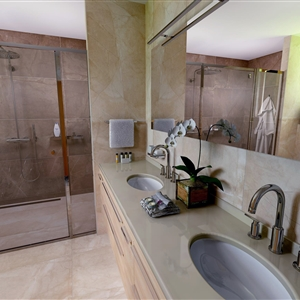 Master Bathroom_03