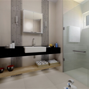 LivingRoom Typical Bathroom_01 (Sara General Est. Dubai UAE)