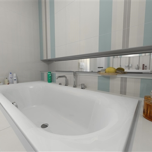 Master Bathroom_01