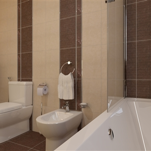 Typical Bathroom_12